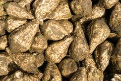 Mucchio dei sugarbeets Fotografia Stock