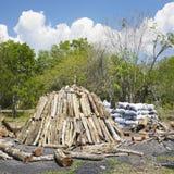Mucchio del carbone di legna immagine stock libera da diritti