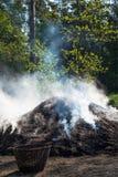Mucchio del carbone nella foresta fotografie stock