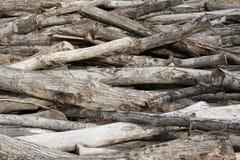 Mucchio del ceppo del legname Fotografia Stock Libera da Diritti