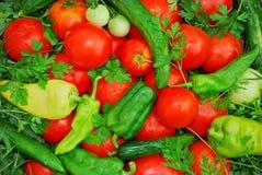 Mucchio del fondo fresco delle verdure del giardino Fotografie Stock Libere da Diritti