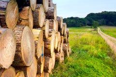 Mucchio del legno Fotografie Stock