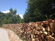 Mucchio del legno Fotografia Stock