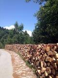Mucchio del legno Immagine Stock