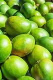 Mucchio del mazzo dei manghi verdi vibranti maturi al mercato degli agricoltori in Asia Luce solare luminosa Immagine di stile di Fotografia Stock