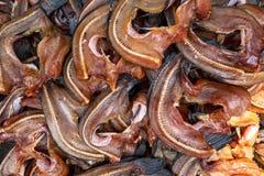 Mucchio del pesce serpente secco visualizzato ad un mercato locale immagini stock