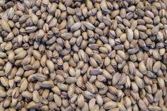 Mucchio del primo piano del pistacchio come priorità bassa fotografie stock libere da diritti