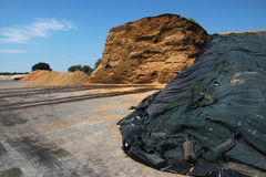 Mucchio della biomassa da un impianto di biogas contro il cielo blu con Cl Immagine Stock