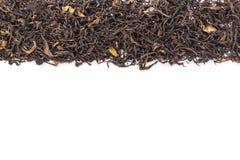 Mucchio della foglia di tè verde secca Colpo dello studio isolato su bianco Immagini Stock