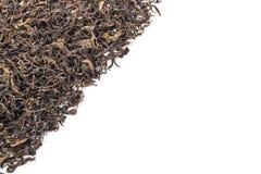 Mucchio della foglia di tè verde secca Colpo dello studio isolato su bianco Fotografia Stock Libera da Diritti