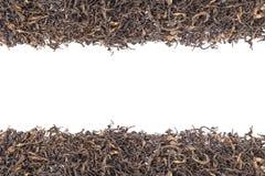 Mucchio della foglia di tè verde secca Colpo dello studio isolato su bianco Fotografia Stock
