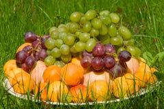 Mucchio della frutta fresca in erba fotografie stock libere da diritti
