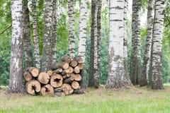 Mucchio della legna da ardere Immagini Stock