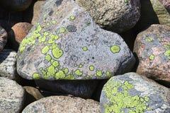Mucchio della pietra con il lichene Fotografia Stock Libera da Diritti