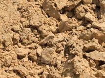 Mucchio della sabbia isolato su fondo Fotografia Stock