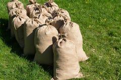Mucchio delle borse riempite che stanno sull'erba Fotografie Stock Libere da Diritti