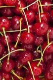 Mucchio delle ciliege Fotografie Stock Libere da Diritti