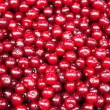 Mucchio delle ciliege Fotografia Stock Libera da Diritti