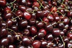 Mucchio delle ciliege scure rosse Fotografie Stock Libere da Diritti