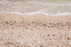 Mucchio delle conchiglie su una sabbia rossa che si trova nel disordine sull'isola della treccia di Yeisk, Russia fotografia stock
