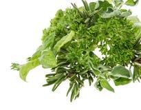 Mucchio delle erbe fresche isolate su bianco Fotografia Stock Libera da Diritti