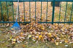 Mucchio delle foglie cadute nel parco di autunno fotografia stock