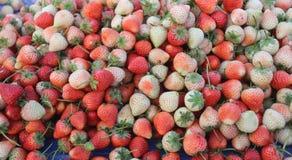Mucchio delle fragole fresche del fondo della frutta Fotografia Stock Libera da Diritti