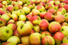 Mucchio delle mele dalla fine Fotografia Stock