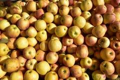 Mucchio delle mele deliziose fotografie stock