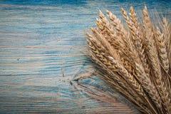 Mucchio delle orecchie dorate della segale del grano del bordo sull'Abo di legno d'annata direttamente Fotografie Stock