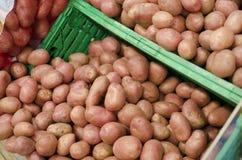 Mucchio delle patate Immagine Stock Libera da Diritti