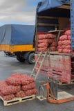 Mucchio delle patate nelle borse e nel camion della patata Immagini Stock
