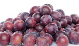 Mucchio delle prugne blu mature fresche Fotografia Stock