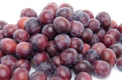 Mucchio delle prugne blu mature fresche Fotografie Stock