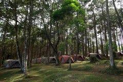 Mucchio delle tende di campeggio al campeggio Fotografia Stock Libera da Diritti