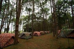 Mucchio delle tende di campeggio al campeggio Immagini Stock Libere da Diritti