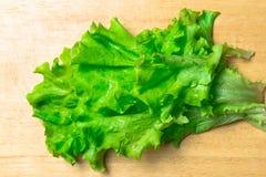 Mucchio delle teste organiche fresche del letucce Il mucchio del raccolto dell'insalata verde del taglio va di recente sulla tavo Fotografie Stock Libere da Diritti