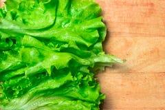 Mucchio delle teste organiche fresche del letucce Il mucchio del raccolto dell'insalata verde del taglio va di recente sulla tavo Immagini Stock Libere da Diritti