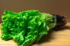 Mucchio delle teste organiche fresche del letucce Il mucchio del raccolto dell'insalata verde del taglio va di recente sulla tavo Immagine Stock Libera da Diritti