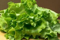 Mucchio delle teste organiche fresche del letucce Il mucchio del raccolto dell'insalata verde del taglio va di recente sulla tavo Fotografie Stock