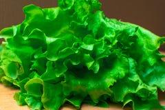 Mucchio delle teste organiche fresche del letucce Il mucchio del raccolto dell'insalata verde del taglio va di recente sulla tavo Fotografia Stock