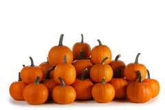 Mucchio delle zucche arancio fotografia stock libera da diritti