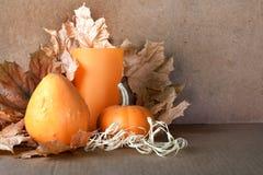 Mucchio delle zucche con il fogliame di autunno Immagini Stock Libere da Diritti