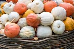 Mucchio delle zucche e delle zucche colorate in Moldavia Immagine Stock Libera da Diritti