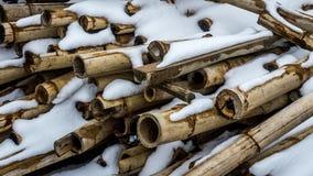 Mucchio di bambù con neve su loro per fondo fotografie stock libere da diritti