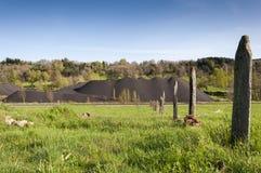 Mucchio di carbone nell'area estraente della valle di Fenar Fotografia Stock