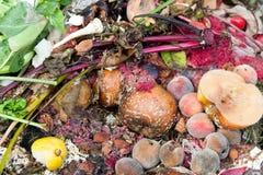 Mucchio di compostaggio fotografie stock