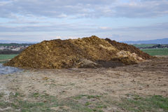 Mucchio di concime nella campagna con cielo blu Mucchio di sterco nel campo su di cortile con il villaggio nel fondo Fotografia Stock