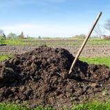 Mucchio di fertilizzante organico Immagini Stock