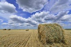 Mucchio di fieno circolare nel campo dell'azienda agricola del mulino a vento con le nuvole grige bianche su cielo blu Fotografia Stock Libera da Diritti